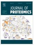 Molecular pathways of varicocele and its repair - A paired labelled shotgun proteomics approach.